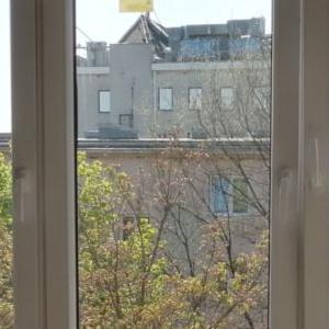 okna-i-rolety-04